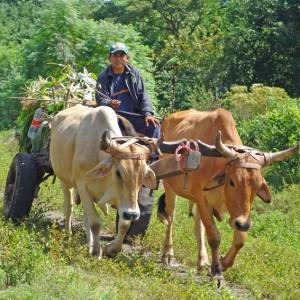 Nicaragua Reise 4