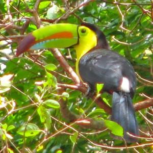 Nicaragua Urlaub 8